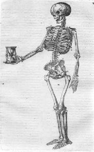 tumblr_me27s53k6e1rrdazqo1_500Skeleton from De corporis humani structura ~1603