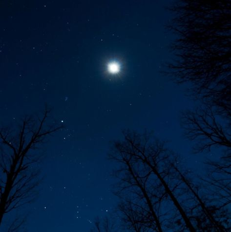 EarthSky Facebook friend Janet Furlong in Culpeper, Virginia took this photo on January 19, 2013. The two brightest objects are the moon and Jupiter. View larger. Janet says: Step outside and lift your head up and view the sky. Totally gorgeous … so much to see tonight.