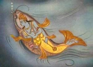 matsyafish