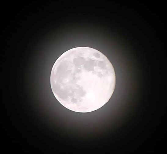 Full Moon. Photo taken earlier this evening by Mimi Mendez in Mexico City.
