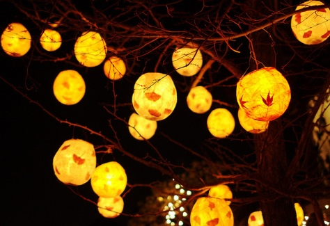Winter-Solstice-Lantern-Festival-Photo-by-eych-you-bee-ee-ahr-tee-via-flickr.Vancouver 2012